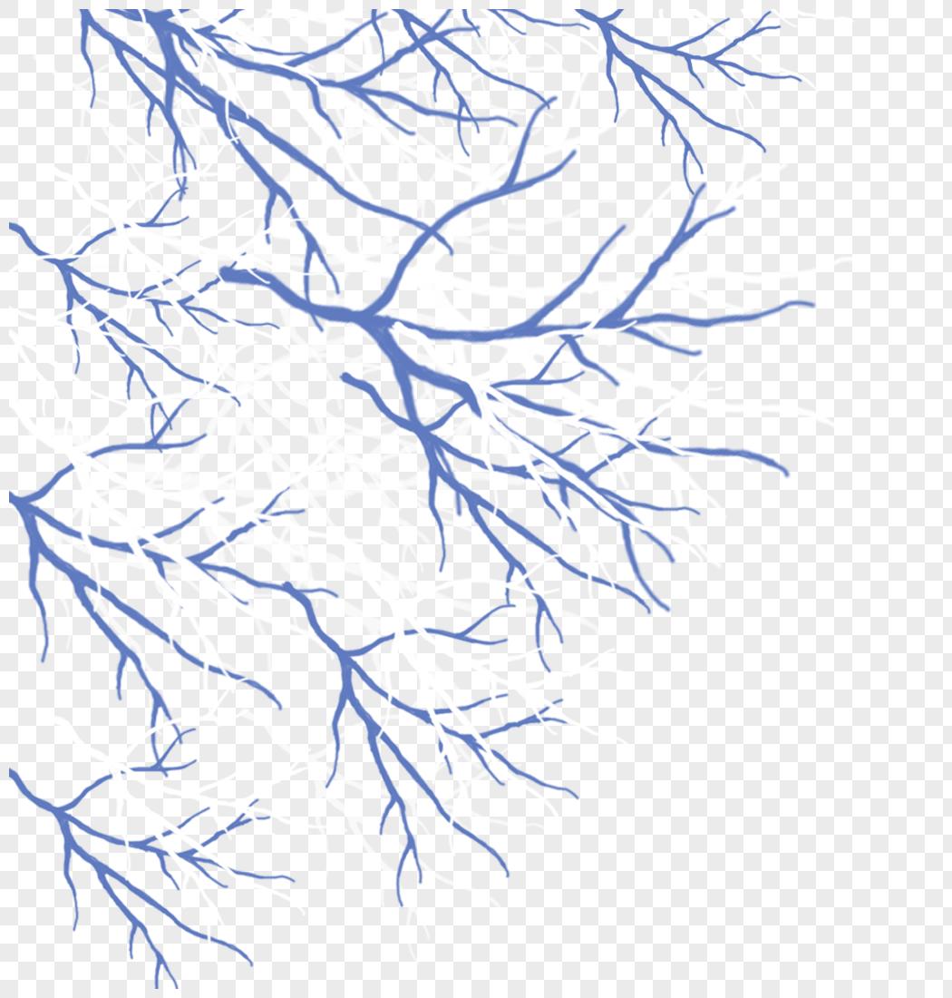 微信朋友圈 qq空间 新浪微博  花瓣 举报 标签: 大树大树树枝大树的