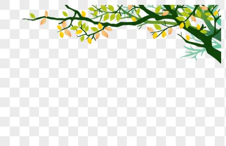 树枝树叶春天图片