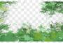 树木边框图片