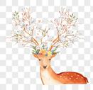 手绘麋鹿图片