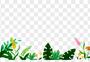 花卉植物png元素图片