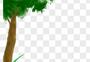 绿色大树png图片