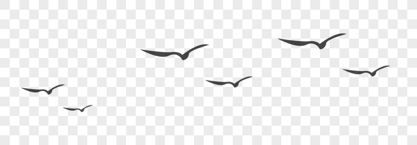 一排大雁图片