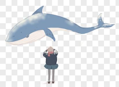 小孩与海豚图片