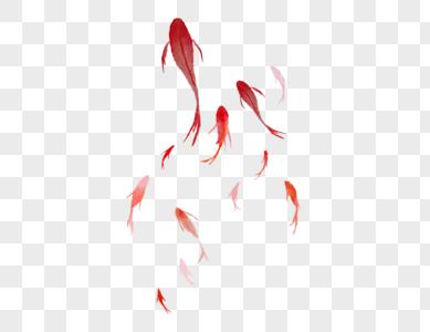 水彩鱼群图片