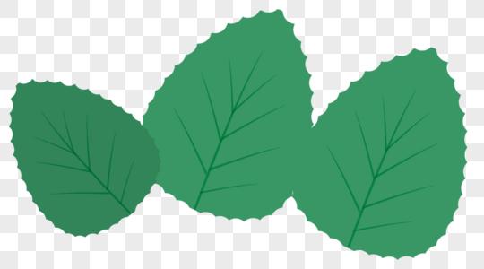 手绘叶子高清图片