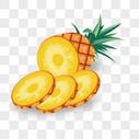 菠萝凤梨水果矢量图形图片
