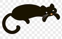黑色的猫图片