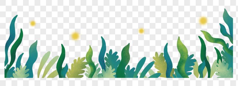 手绘大暑植物图片