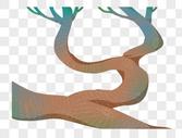 夏季树杈图片
