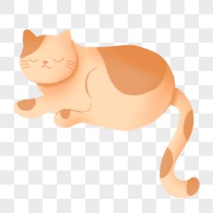 闭眼休息的猫图片