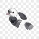 水墨画小鸟图片