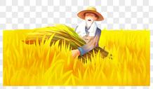 农民收稻子图片