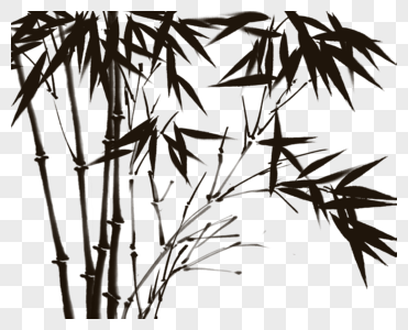 中国风竹林图片