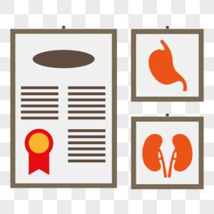 人体器官图图片