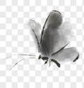 水墨蝴蝶图片