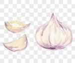 水彩大蒜图片