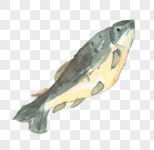 水彩深海鱼图片