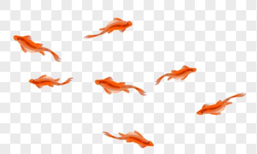 红色鱼群图片