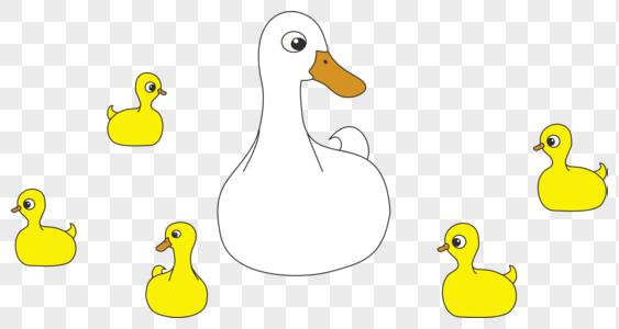 小鸭子和鸭妈妈图片