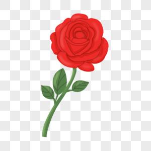 一支玫瑰花高清图片