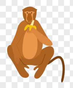 吃香蕉猴子图片