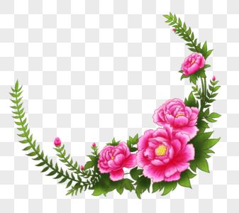 牡丹花边图片