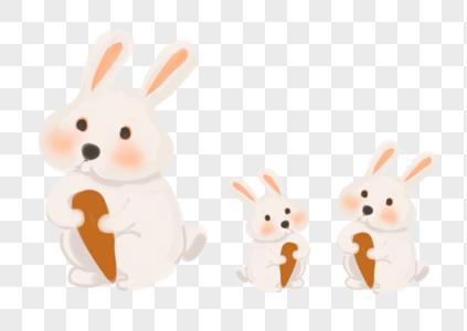 吃胡萝卜小白兔图片