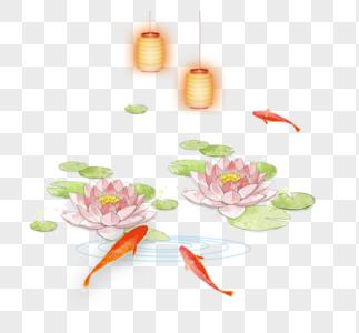 池塘里的荷花鲤鱼图片