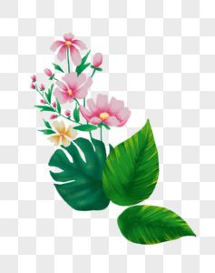 植物花卉png元素图片