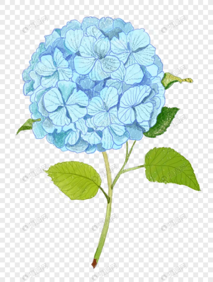 手绘元素绣蓝色插画球花PNG素材_设计素材免如何绘制ai等轴格式图片