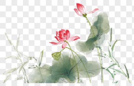中国风水墨写意荷花图片