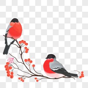鸟站在树枝上图片