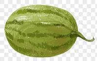 手绘西瓜图片