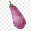 手绘紫茄子图片