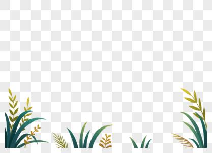 植物背景图片