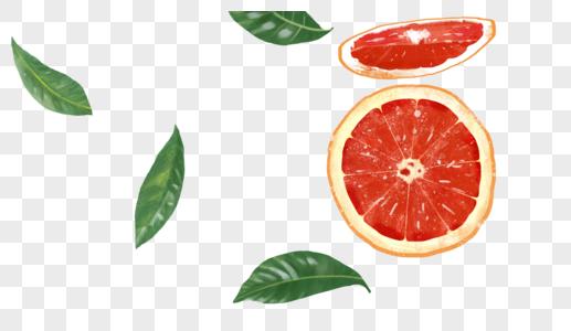 元素橙子图片