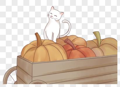 蹲在南瓜车上的小猫图片