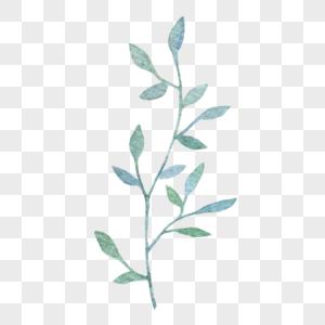 蓝绿色小叶子图片