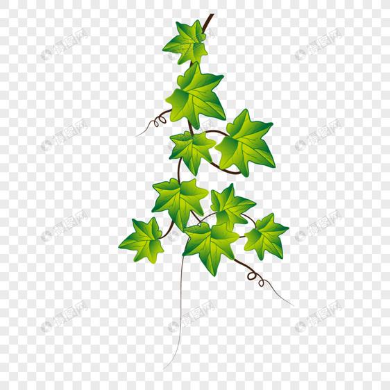 绿色叶子边框图案