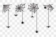 万圣节蜘蛛网图片