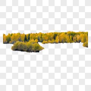 远景树草群图片
