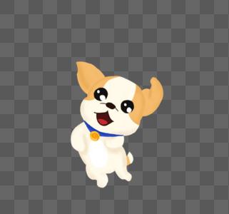 开心的小狗图片