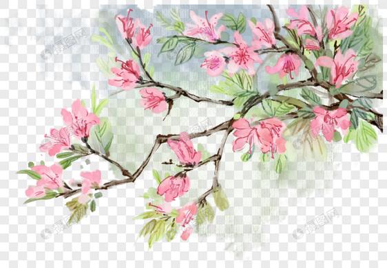 中国风写意花卉图片