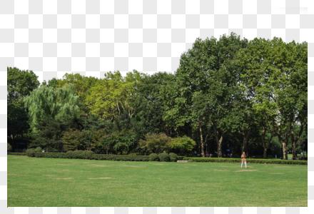 蓝天白云树林草地老人风景图片