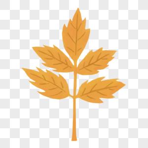 金黄色叶子图片