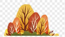秋天森林图片