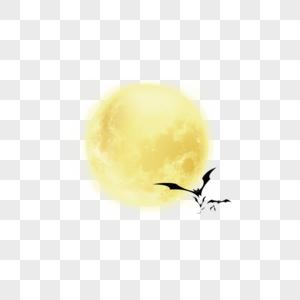 万圣节月亮蝙蝠图片