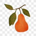 橙色果实图片