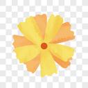 黄色花朵图片